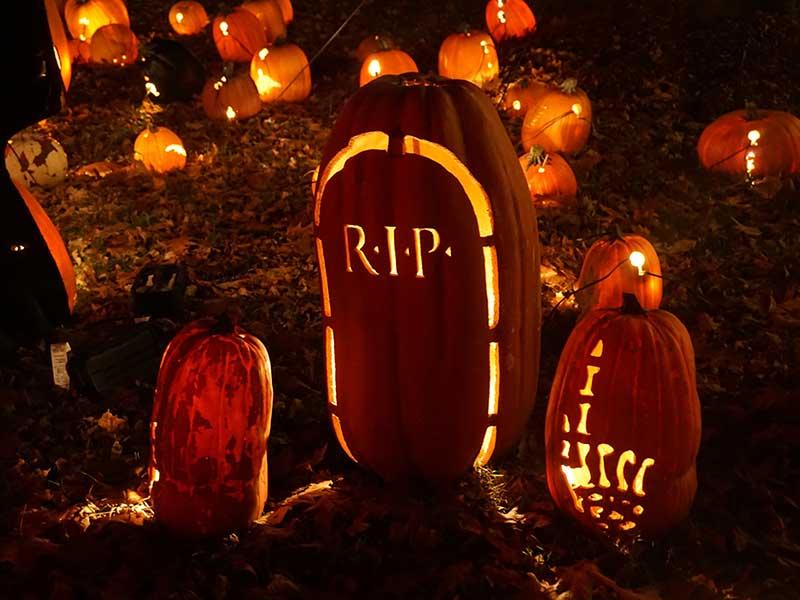 Smarte Halloween Beleuchtung im Außenbereich